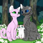 Katzenbilder aus Warrior Cats 2.0