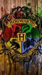 Was weißt du alles über die Harry Potterbände?