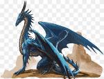 Welche Drachenart wäre in einer Fantasy-Welt dein Begleiter? (Teil 1)